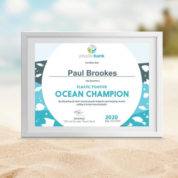 Become a Plastic Positive Ocean Champion